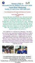 Sponsor a Pony Day and Learn about Volunteering