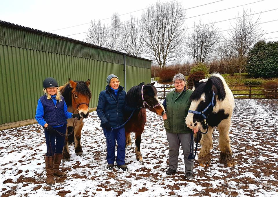 A Welcome Visit from the Chiropractor for Shiresmill Ponies