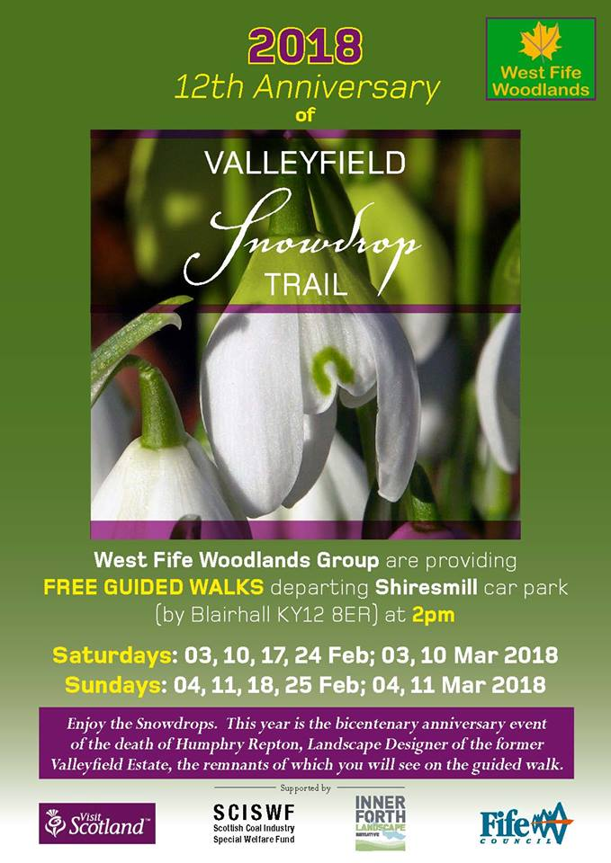Valleyfield Snowdrop Trail Walks - On Now!