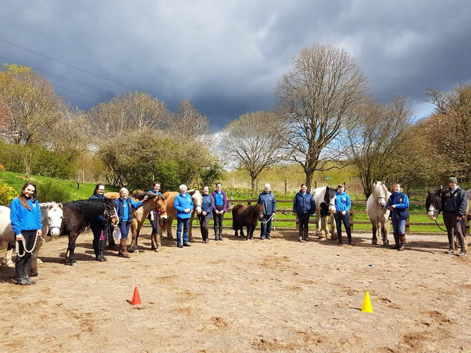 Pony Sponsorship Day and Learn about Volunteering Success!