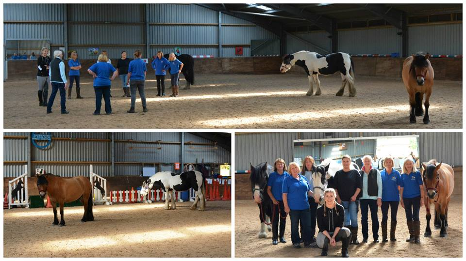 Equine Assisted Learning Workshop with Sarah Morehouse