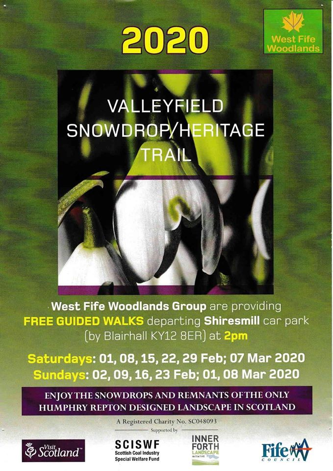Snowdrop walks 2020